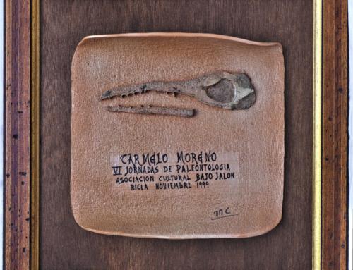 1999 – VI Jornadas de Paleontología