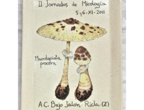 2011 – II Jornadas de Micología