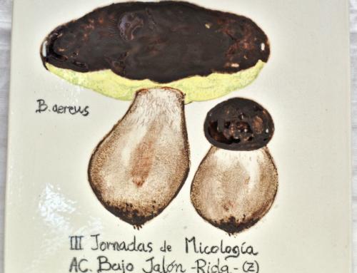 2012 – III Jornadas de Micología