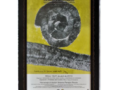 2013 – XII Jornadas Aragonesas de Paleontología