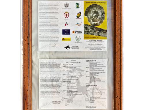 2008 – X Jornadas Aragonesas de Paleontología