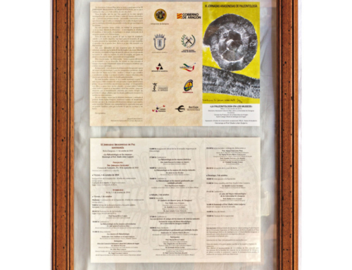 2010 – XI Jornadas Aragonesas de Paleontología
